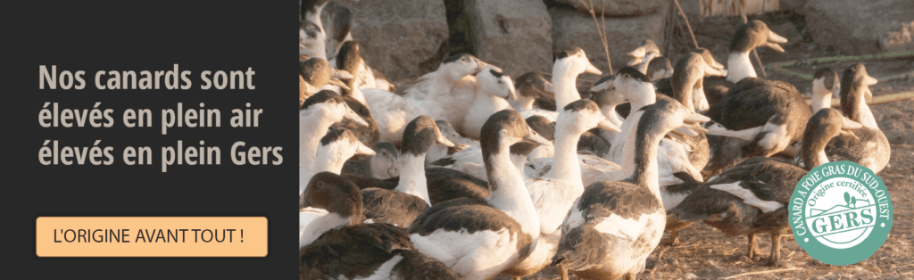 Nos canards sont élevés en plein air